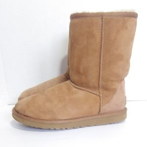 UGG classic chestnut short boots